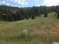 Lot 22  Homestake Meadows, Butte
