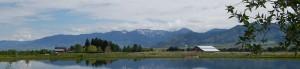 Bozeman Montana Homestead Declaration Photo