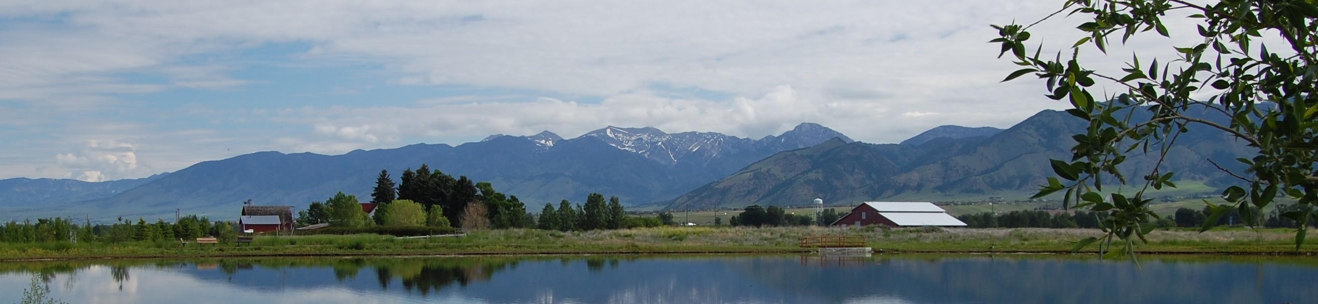 Montana Homestead Declaration