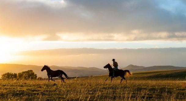 Montana Horse Property Farms Land Bozeman Equestrian