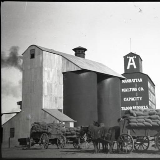Circa 1910, Manhattan, MT grain elevator and loaded wagons - Montana Memory Project