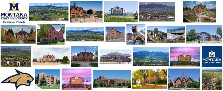 Real Estate Near Montana State University