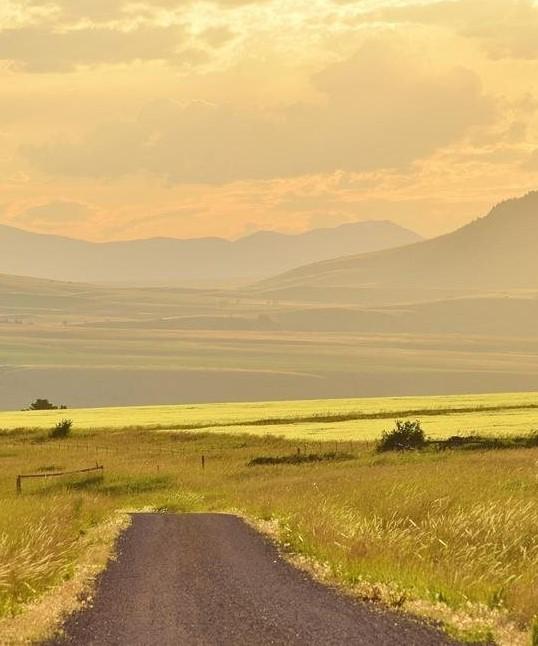 Photo History of Montana Ranches, Taunya Fagan