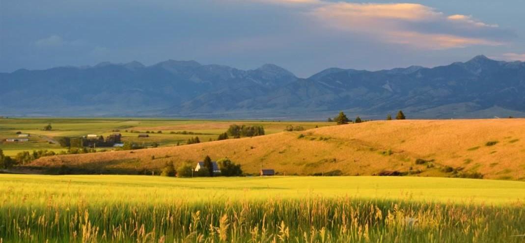 Montana Ranching History