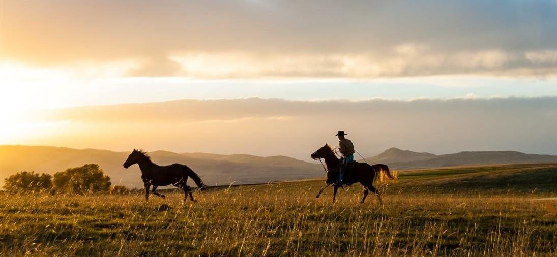 Photo Taunya Fagan Horse Properties For Sale in Montana