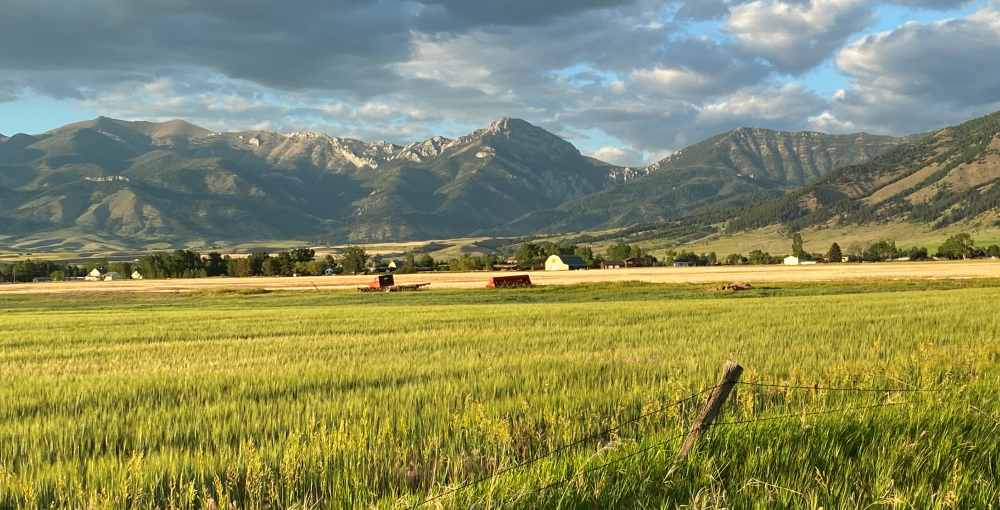Bridger Mountains Gallatin County, Montana ©Brett Fagan Photo